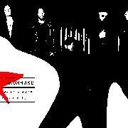 Би-2 & Диана Арбенина & Владимир Шахрин & Найк Борзов Птица На Подоконнике слушать онлайн